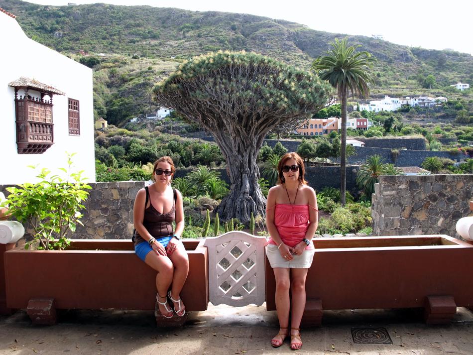Icod de Los Vinos - Drago Milenario - Tenerife
