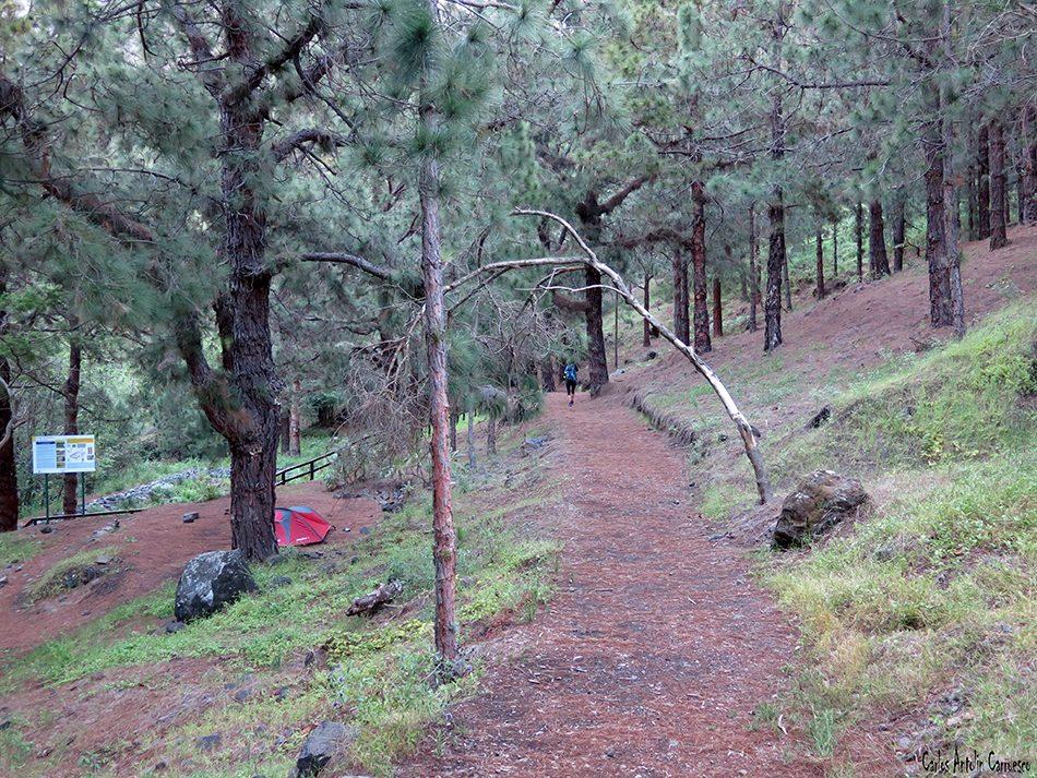 Zona de Acampada - Centro de Servicios Taburiente - La Palma - Parque Nacional de La Caldera de Taburiente