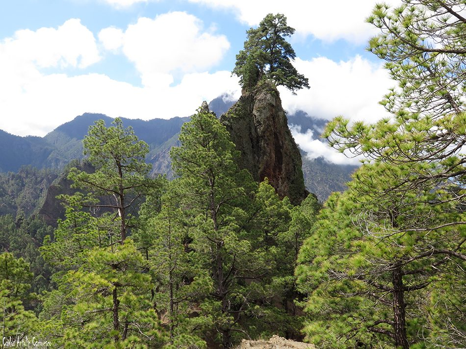 Roque del Huso - Taburiente - La Palma