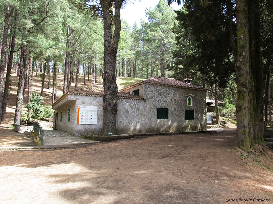 Ruta de Los Volcanes - Refugio El Pilar - La Palma