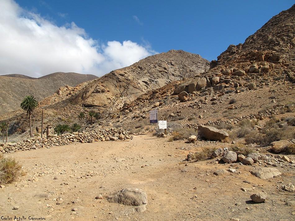 Buen Paso - Barranco de Las Peñitas - Fuerteventura