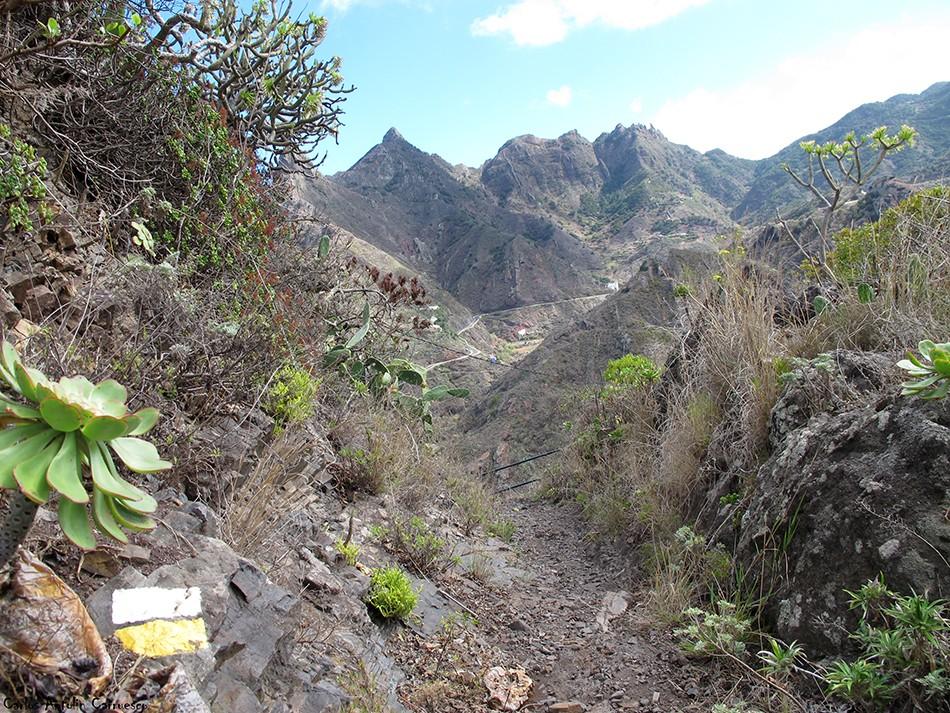 Valle de Afur - Anaga - Tenerife