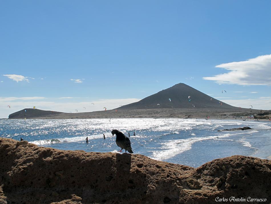 """El Médano - playa de """"Leocadio Machado"""" - Tenerife - Paseo Ntra. Sra. de las Mercedes de Roja"""
