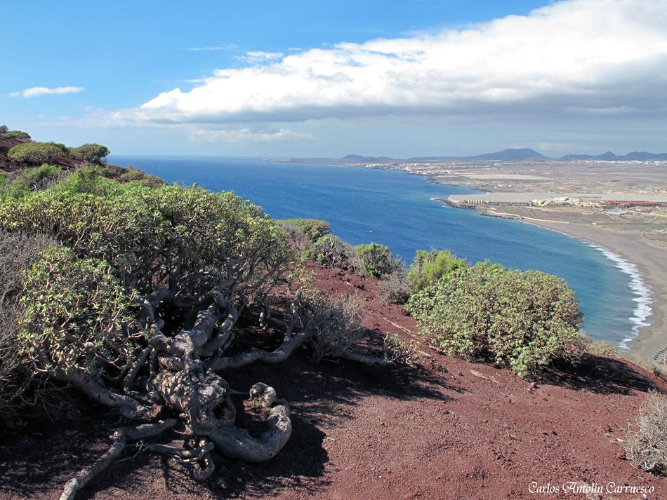 Montaña Roja - La Tejita - Tenerife