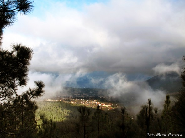 Camino a Candelaria I - La Orotava - Tenerife