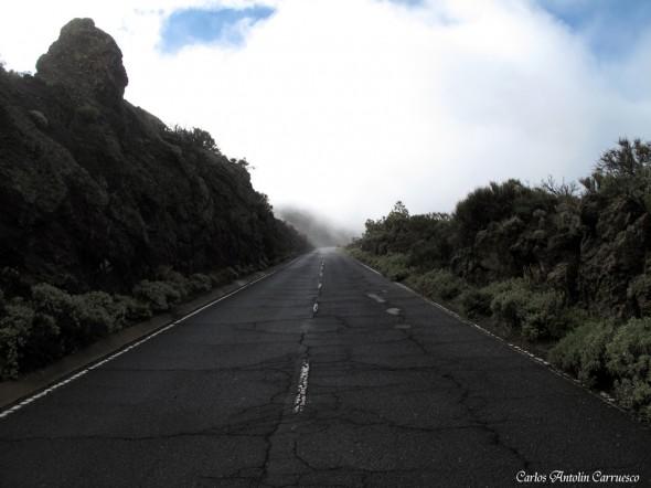 Carretera TF24 - Carretera de La Esperanza - Tenerife