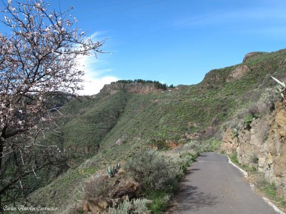 GC130 - Lereta - Gran Canaria