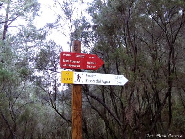 Camino a Candelaria I - Choza Pedro Gil - Tenerife