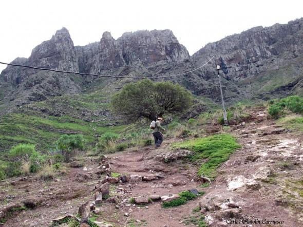 San Pedro - Agaete - Gran Canaria - barranco de ingenio