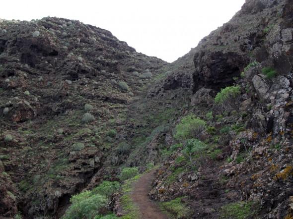 Güi Güi - Guguy - Gran Canaria - Degollada de Aguas Sabinas
