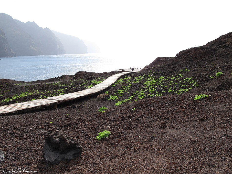 Punta de Teno - Faro de Teno - Tenerife