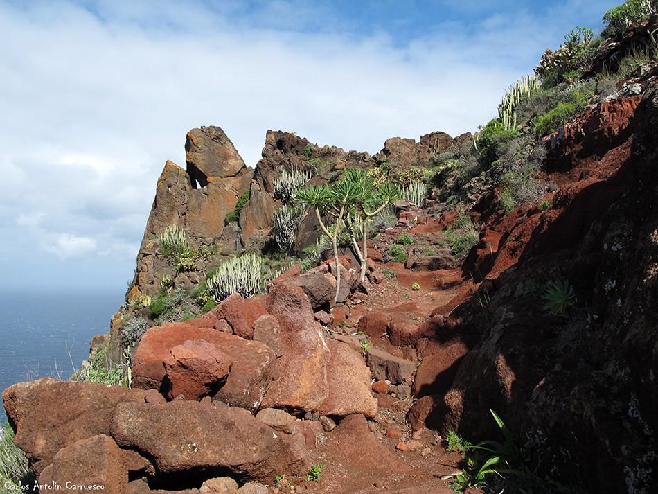Parque Rural de Teno - Tenerife