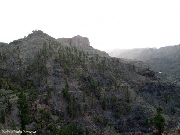 Embalse Cueva de Las Niñas - Gran Canaria