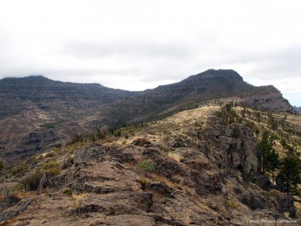El Laurelillo - El Viso - Gran Canaria - inagua