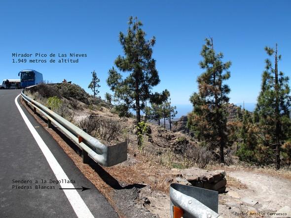 Pico de Las Nieves - Gran Canaria