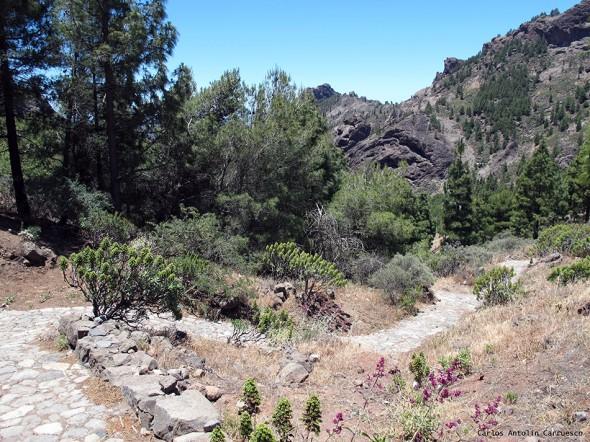 La Goleta - Ayacata - Gran Canaria