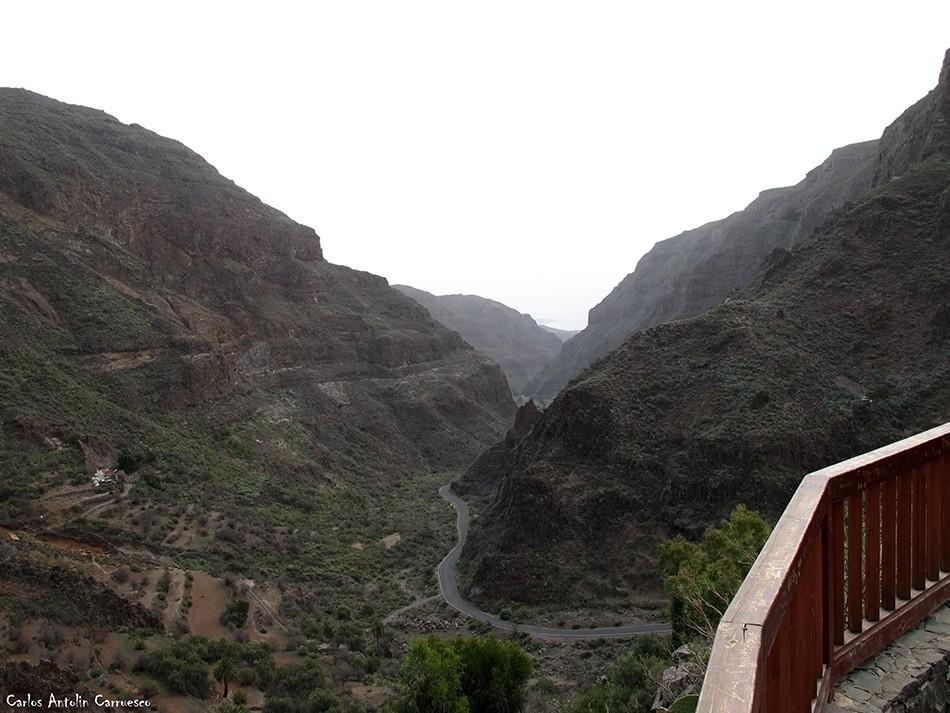 gc103 - guayadeque - montaña de las tierras