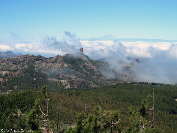 Mirador Pico de Las Nieves - Roque Nublo - Teide - Gran Canaria
