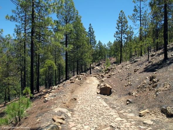 Camino Real - Camino de Santiago - Gran Canaria
