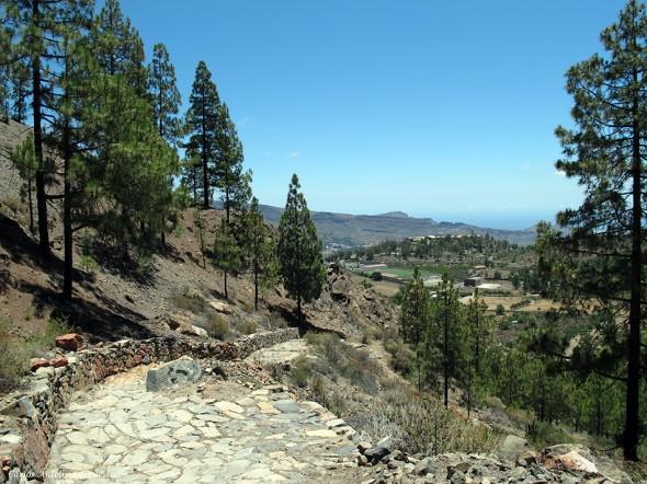Camino Real - Camino de Santiago - Tunte (San Bartolomé de Tirajana) - Gran Canaria