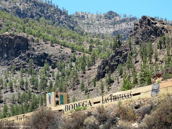 Tunte (San Bartolomé de Tirajana) - Gran Canaria - bodega las tirajanas