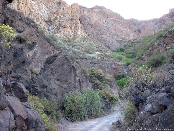 Risco Blanco - La Culata - Gran Canaria