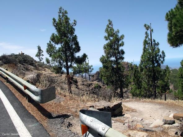 acceso al sendero que nos bajará hasta la Degollada Piedras Blancas - Gran Canaria