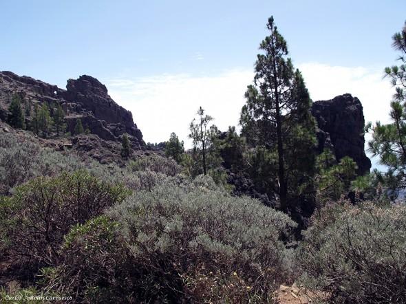 Degollada Piedras Blancas - cruce de senderos - Gran Canaria