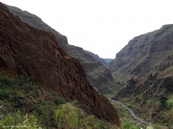Casas Cueva - Barranco de Guayadeque - Gran Canaria - agüimes - GC103