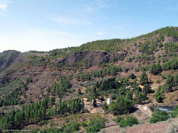 Caldera de Los Marteles - Gran Canaria - los bucios