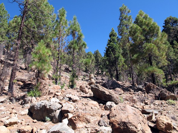 sendero hacia las Cumbres de Ucanca y al Roque de Los Almendros - Parque Nacional del Teide<br /> Tenerife