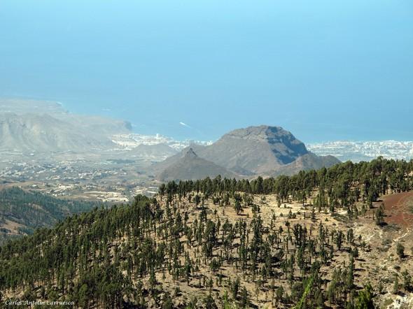 conde - imoque - Parque Nacional del Teide<br/>Tenerife
