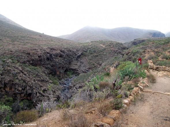 Vento - Arona - Tenerife - barranco del rey