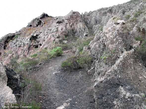 Adeje - Camino de Suarez - Tenerife
