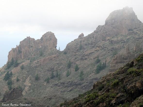 Camino de Suarez - GR131 - Tenerife - degollada de los frailitos