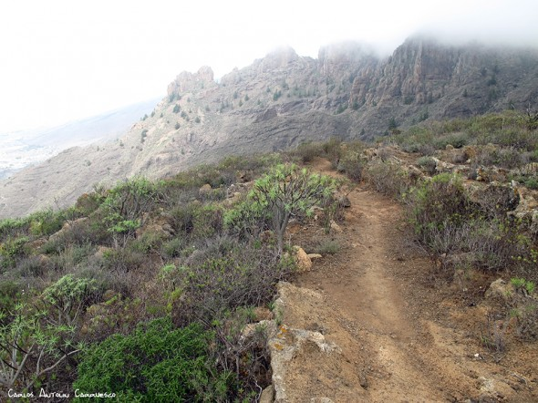 Camino de Suarez - GR131 - Tenerife