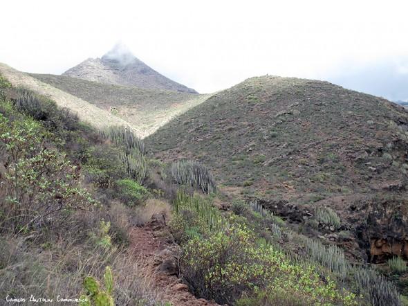 GR131 - Camino de Suarez - Tenerife
