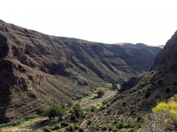 barranco de Guayadeque - Gran Canaria - GC103