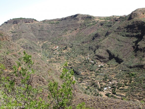 Barranco de Guayadeque - Lereta - Gran Canaria