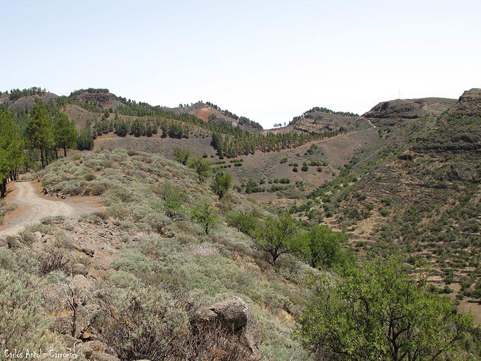 Los Marteles - Guayadeque - Gran Canaria