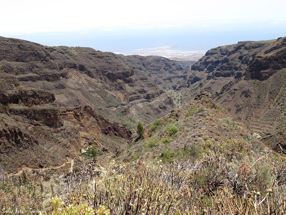 Montaña de Las Tierras - Guayadeque - Gran Canaria