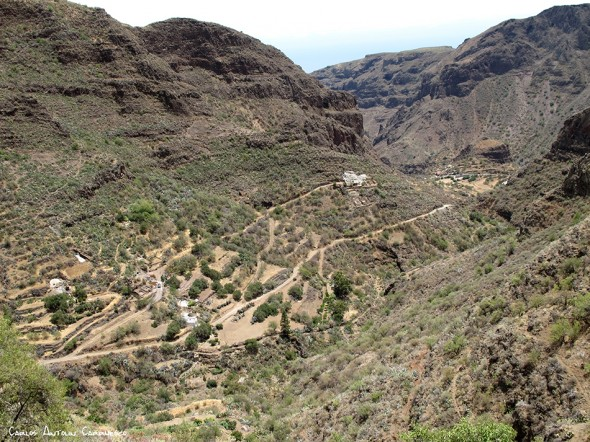 sendero de Paso Bermejo - dirección a Lereta - Gran Canaria - lereta - montaña de las tierras