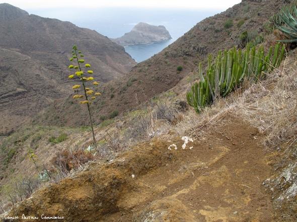 sendero a la Playa de Antequera - Anaga - Tenerife<br />
