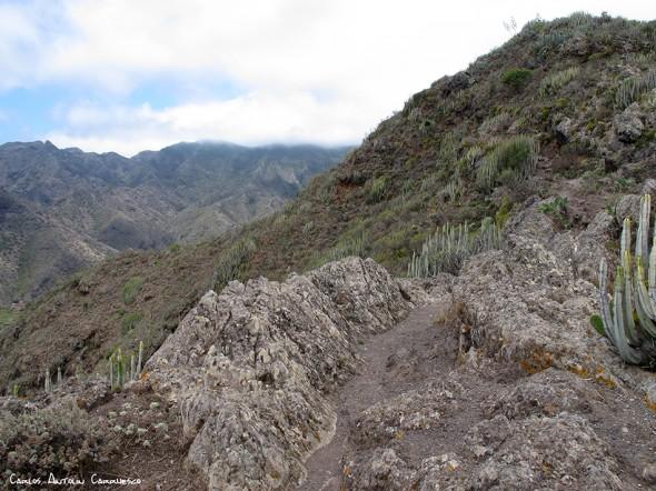 Barranco de Antequera - Anaga - Tenerife<br/>Degollada Pasito del Corcho