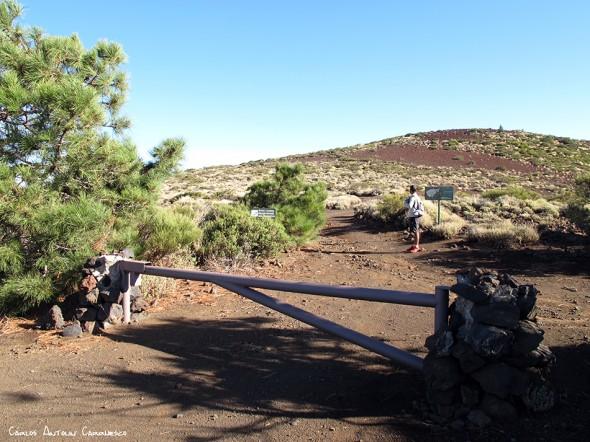 kilómetro 33.5 de la TF24 (carretera de La Esperanza) - Parque Nacional del Teide<br/>Tenerife