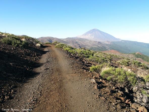 pista de Igueque (Nº17) - Parque Nacional del Teide<br/>Tenerife