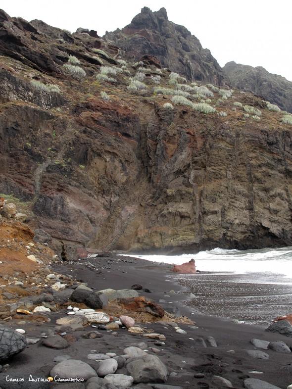 Playa de Tamadiste - Afur - Anaga - Tenerife - el marrubial