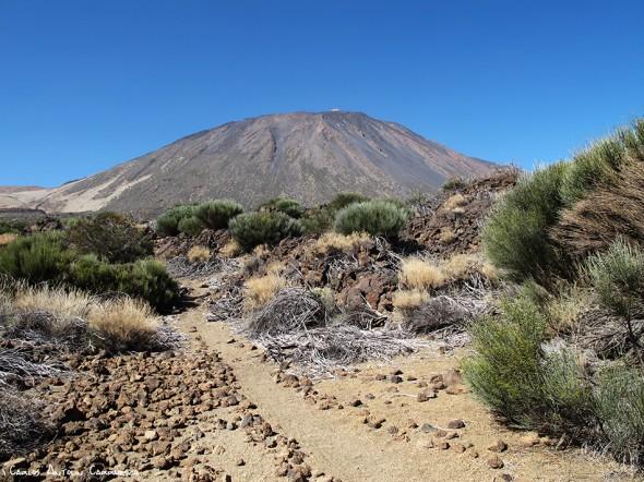sendero Nº33 - P.N. del Teide - Tenerife