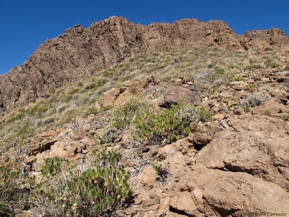 El Sombrero - Cumbres de Ucanca - P.N. del Teide - Tenerife