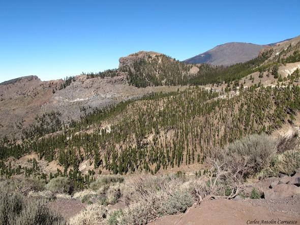 El Sombrerito - TF-21 - Parque Nacional del Teide - Tenerife